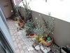 マンションでも出来る?!ガーデニング☆室内でも育てやすい観葉植物!
