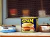 節約のための超カンタン スパム料理